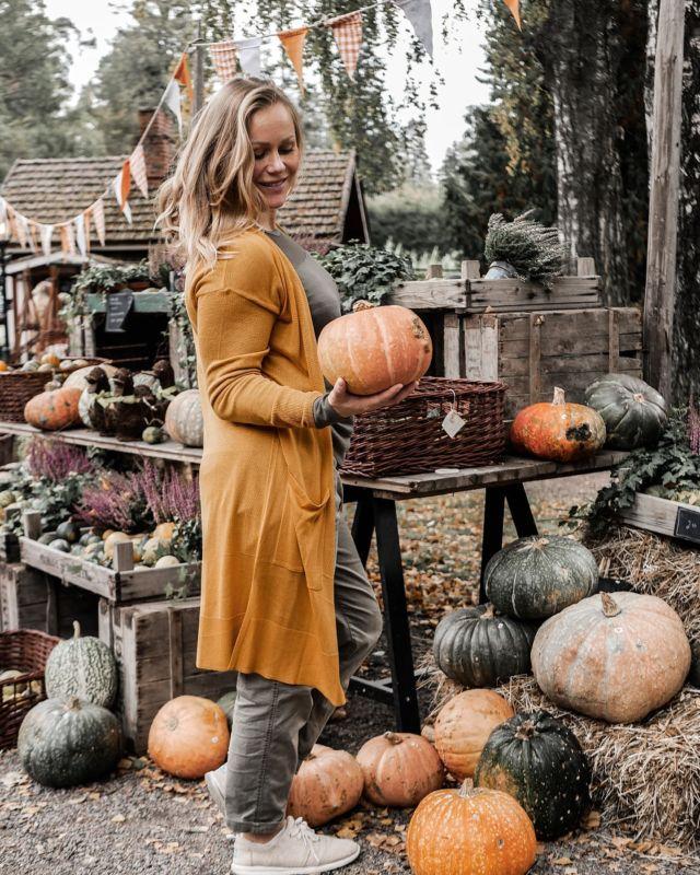 Viikon päästä on Halloween 🎃 Ja siitä viikon päästä pyhäinpäivä (ja jo marraskuun 6.😱).   Ja kun tälle linjalle lähdettiin niin siitä kuukauden päästä on itsenäisyyspäivä 🇫🇮 ja siitä jokunen viikko niin on joulu 🎅 ja sitten juhlitaankin uutta vuotta 202✨ mutta ennenkuin mennään pikakelauksella sinne saakka, niin nautitaan tästä viikonlopusta😌  Minkäslaisia viikkonloppusuunnitelmia siellä on?  Meillä syyslomalaiset palaavat tänään takaisin kotiin papan ja mumin hoivista ja harrastukset jatkuvat pienen tauon jälkeen normaalisti. Tänään ei harrastusten vuoksi oikein jää mahdollisuuksia yhteiseen tekemiseen mutta huomenna, jos sää sallii, nin haaveilen yhteisestä ulkoiluretkestä jonnekin luonnonhelmaan eväineen. Mutta jos ei, keksitään jotain muuta mukavaaa.  #viikonloppu #rentoviikonloppu #halloween #kurpitsa #kurpitsat #syksy #lokakuu #kurpitsajuhla #mikrovaikuttaja #vaikuttajamedia #perheenkesken #arkisiajuttuja #perhearki #perhe #perheenkesken